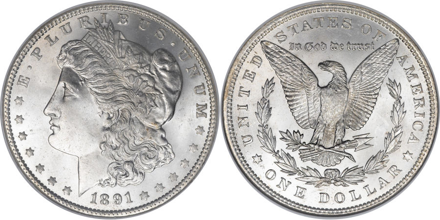 1891 Morgan Dollar Value