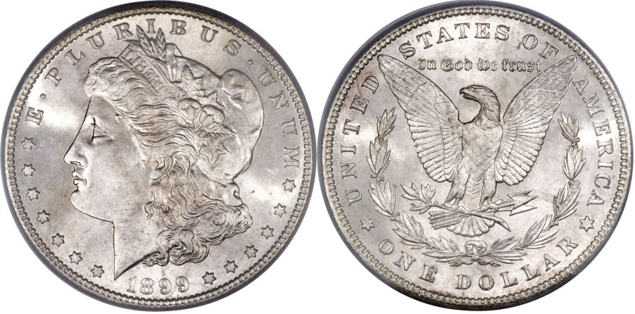 1899 Morgan Dollar Value