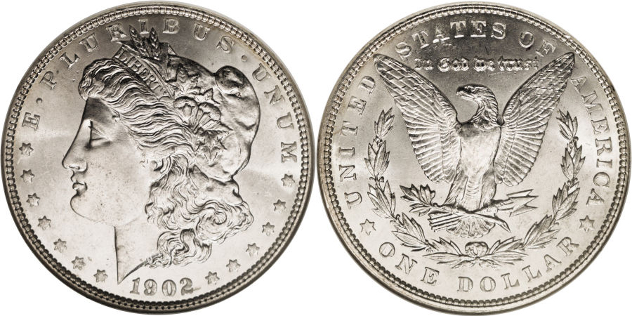 1902 Morgan Dollar Value